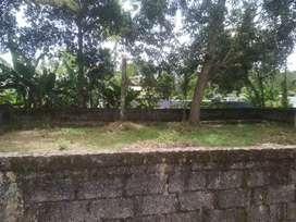 Plots near sreekaryam 4/5/7 cents