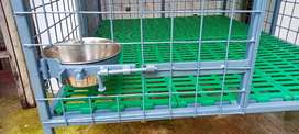Iron dog cage for sale