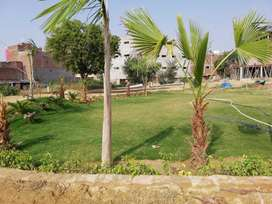 2 bhk Flat available for sale in Phase 2 Noida near NSEZ metro