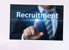 Vacancies for students and jobseekers