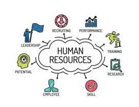 HR Managment job available