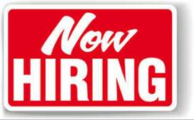 REQUIRED SALES EXECUTIVE   NO CHARGES