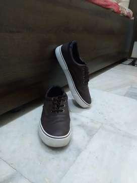 Stylish coffee brown sneakers
