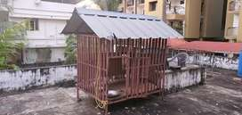 Cage available at kadavanthra