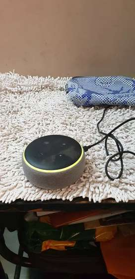 Alexa device echo dot