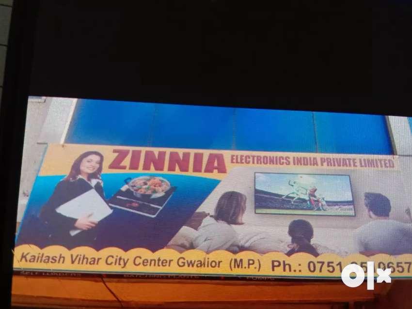 Zinnia electronic India pvt. Ltd. 0
