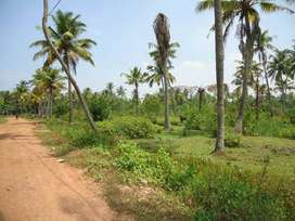 550 cent plot with 3 side road at Vaikom