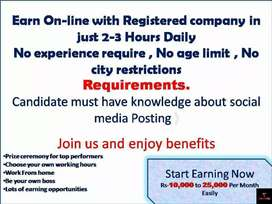 Online job for fresh Students