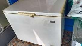 Jual Chest Freezer Electrolux 300 L