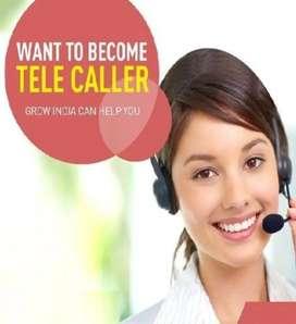 Telecaller