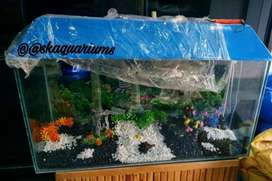 Fish food and aquarium accessories available