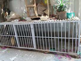 Birds cage for sale very cheap