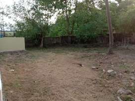 5.25 cent land for sale