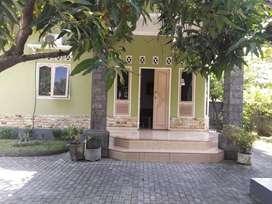 Rumah dan Tanah di pinggir jalan raya Lingsar