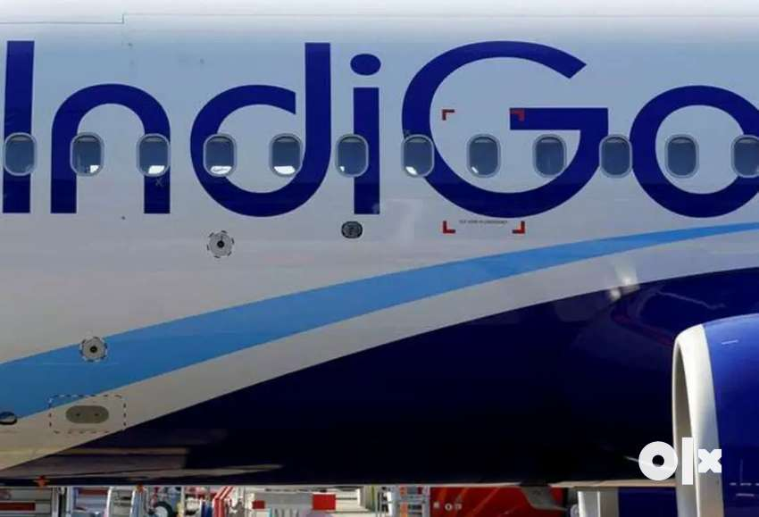 REQUIRED IN ALL AIRPORT DRIVER AND SECURITY STAFF IN INDIGO AIRLINE 0