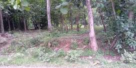Tanah 1821 SHM, Pinggir jalan