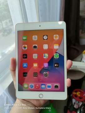 tablet ipad mini 5 wifi cellular 64gb rosegold grs sd 9jan 2021