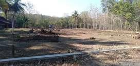 KEK Borobudur YIA Wates Ialah Episode Jogja Barat, Tanah di Sini Surga