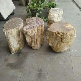 Kursi batu fosil alami