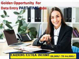 DATA ENTRY PART TIME SIMPLE TYPING JOB S