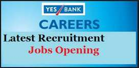 YES Bank process- Office Assistant cum Field Executive jobs