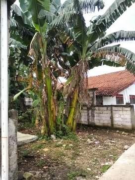Dijual Tanah Kosong 2,5 juta/m di Mustika Jaya Bekasi Tambun Selatan