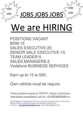Sales and Marketing Boys Required