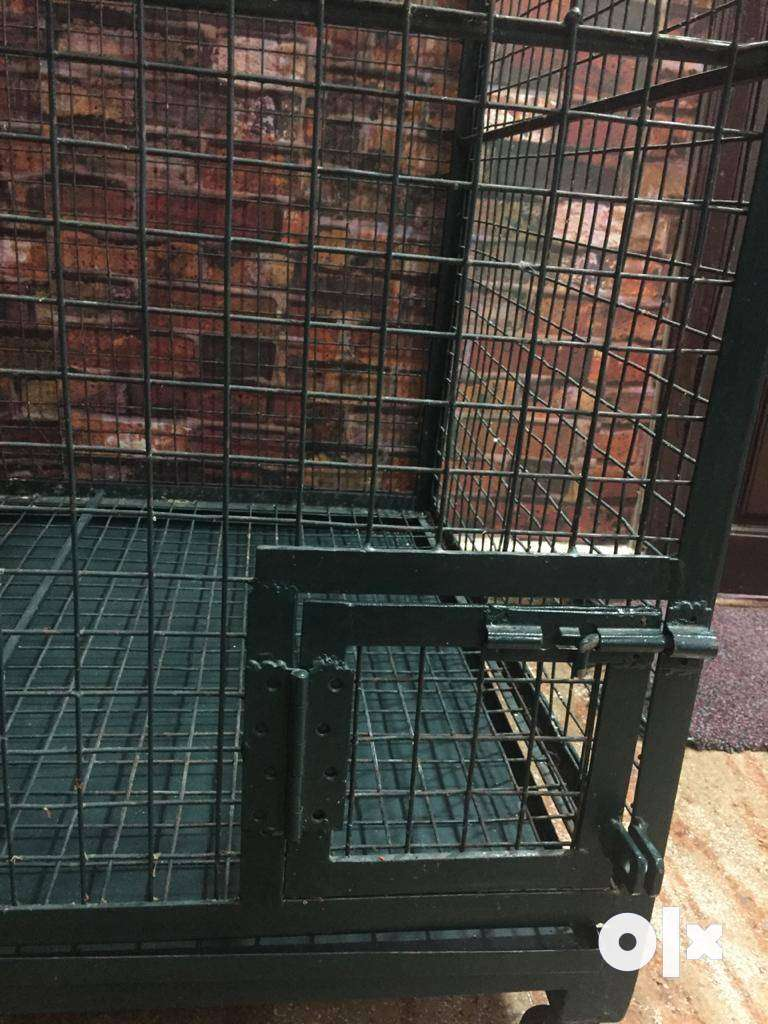 Big Bird cage for sale 0