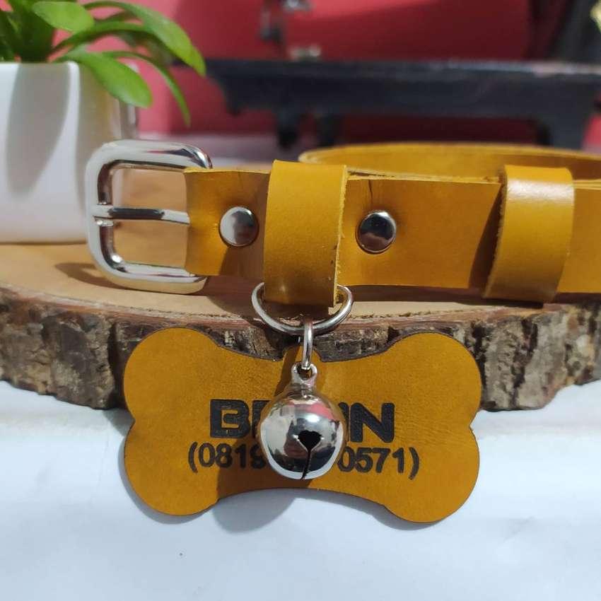Kalung Anjing Custom Gratis Lonceng Anti Karat