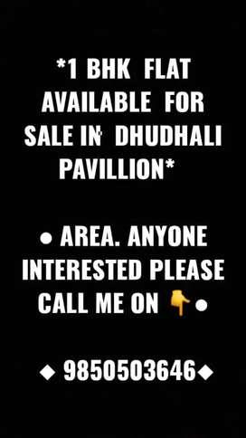 1 bhk flat Flat nr dhudhali Papillion