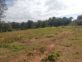 1.15 Acre Farm House in Pathamuttam, Kurichy