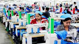Designers and tailors required for bra manufacturing unit