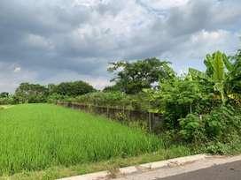 Jual Tanah Jalan Godean Sembuh Wetan Sidokarto Jogjakarta