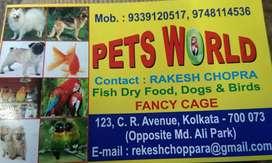All pet food madicen