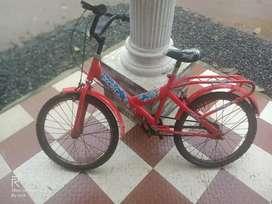 Bsa cycle.