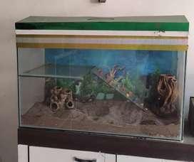 Aqurium for fish