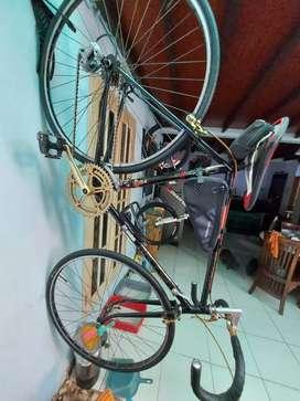 *Raleigh* Circa 1980  Very Classic Road Racing Bike