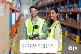 Free Room food avlbl Packing executives required
