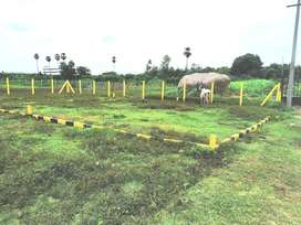 CMDA plots @ Vandalur Mannivakkam
