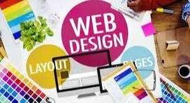 Need Expert Website Designer & Devoloper in kanpur