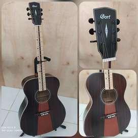 Gitar Akustik Cort Dan Ibanez