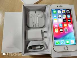 i phone 6 festivsl poffe price good quility phone