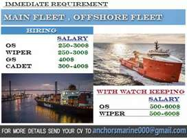 Vacancy for ship , offshore and onshore, storekeeper