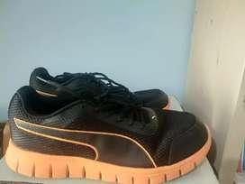 Puma brand Shoes - Unisex