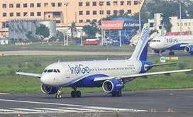 jobs for you! Indigo Airline Urgent hiring for ground staff Aviation M