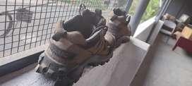 Woodland Shoes size 43