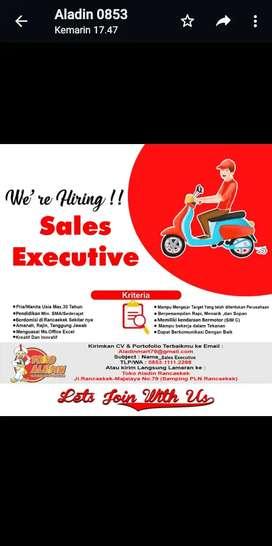 Sales executive