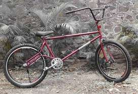 Customised Bicycle new tyres brakes etc
