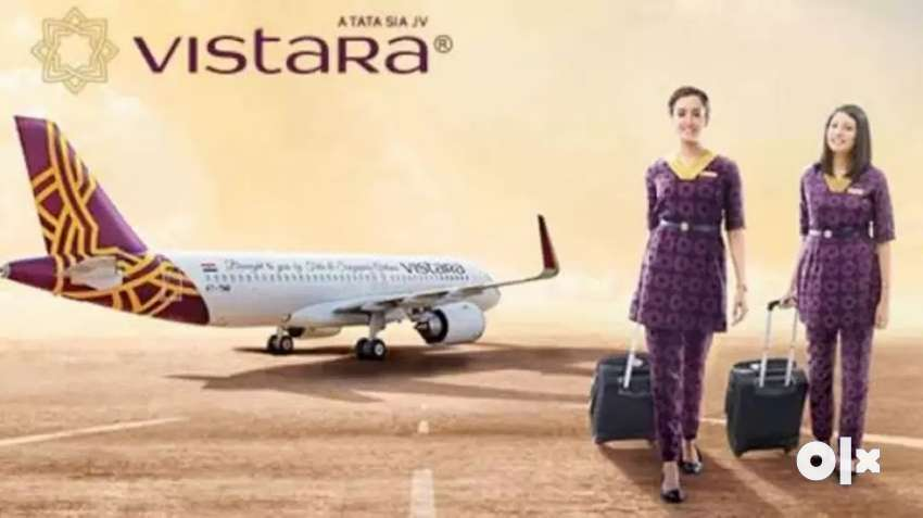 Vistara airlines hiring male female candidate 0