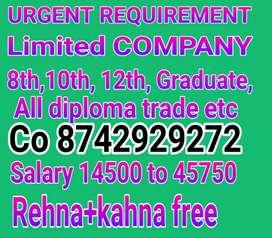 URGENT hiring limited company